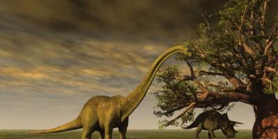 اكتشاف جديد يؤكد قضاء كويكب على الديناصورات