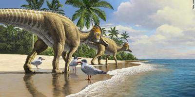 الأولى من نوعها.. اكتشاف حفرية ديناصور يرقد على بيضة